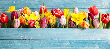 colorful arrangement of fresh spring flowers