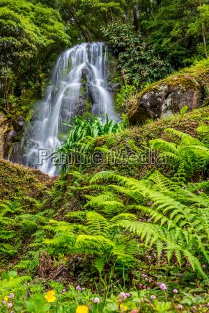 famous cascade hos sao miguel island