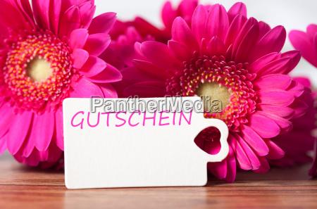 gutschein - 16510534