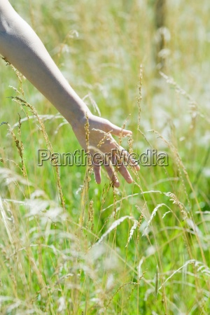 woman touching tall weeds in field