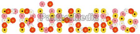 spring of flowers flower nature freeman