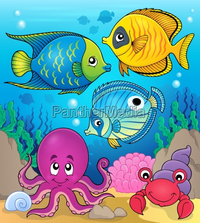 coral fauna theme image 2