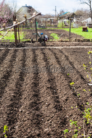 haus gebaeude agrar landwirtschaftlich garten bett