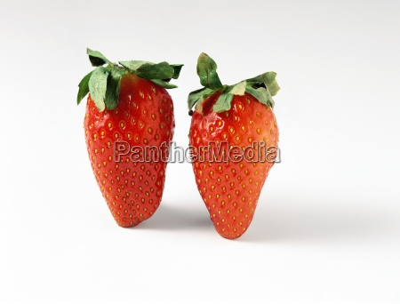 two fresh strawberries close up