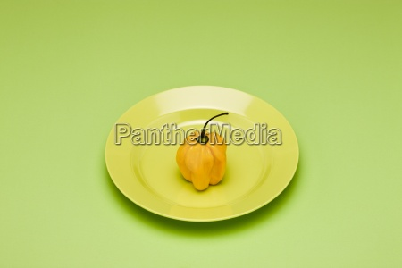 food concept fresh yellow bell pepper