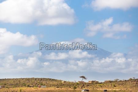kilimanjaro overlooking african savannah