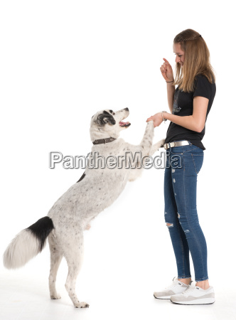 dog jumps up on its owner