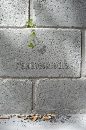 zigarette gegensatz beton mauer outdoor freiluft