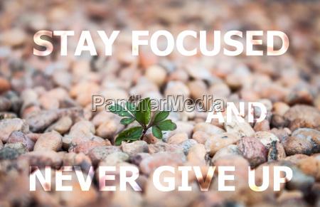 bleiben sie fokussiert und geben sie