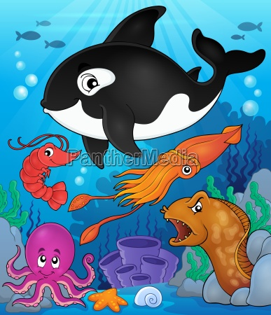 ocean fauna topic image 8