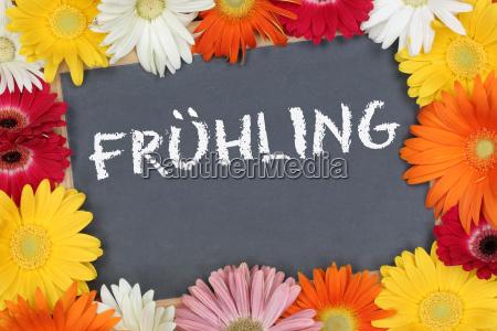 fruehling fruehjahr im garten mit bunten
