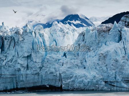 margerie glacier at glacier bay
