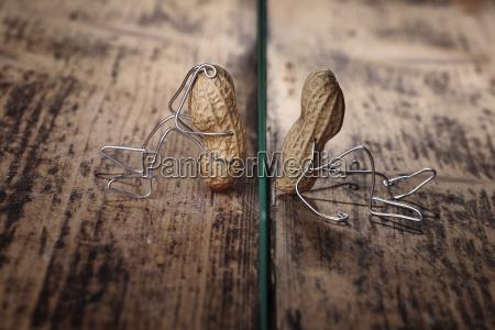 peanut manikins durch glasscheibe getrennt