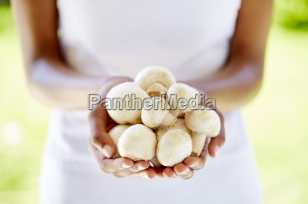 womans hands holding mushrooms