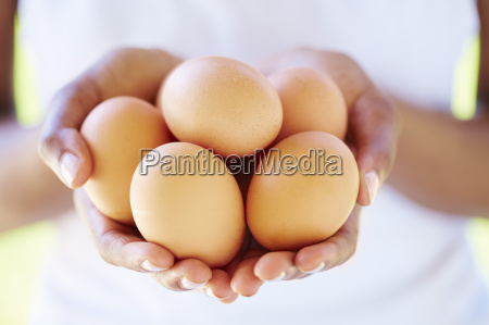 womans hands holding brown eggs