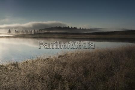 usa wyoming hayden valley yellowstone national