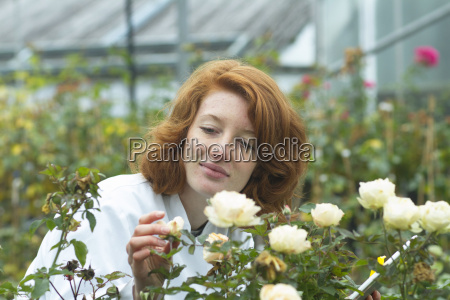 female scientist controlling roses in a