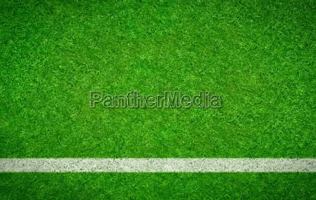 fussballrasen mit waagrechter linie