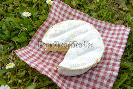 camembert auf einem roten platz tischdecke