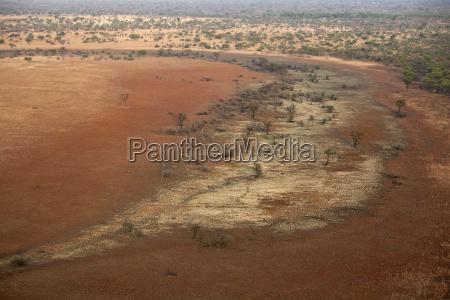 chad zakouma national park trees in