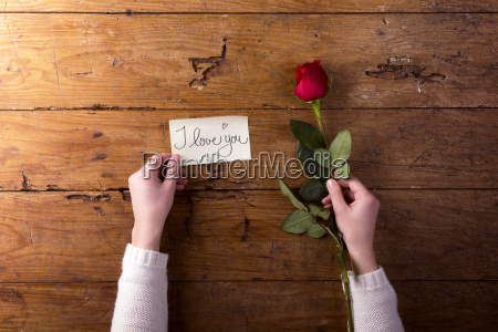 womans hands holding red rose and