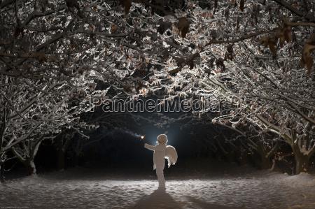 baum winter nacht nachtzeit engel outdoor