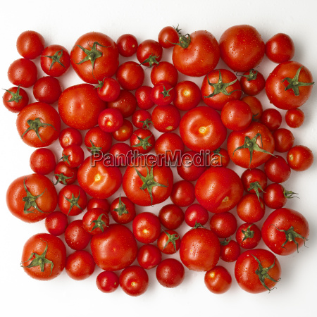 different sorts of tomatoes on white