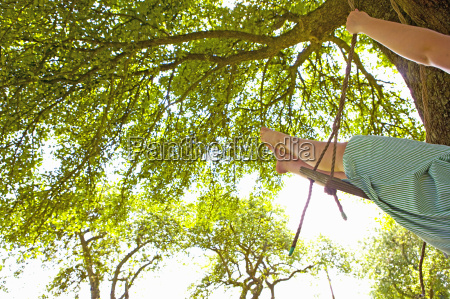 girl swinging on a tree swing