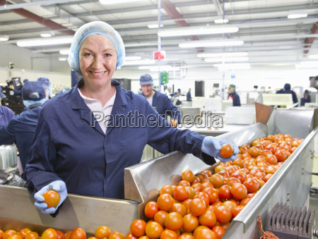 portrait confident quality control worker sorting