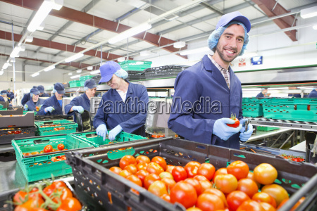 portrait smiling worker packing ripe red