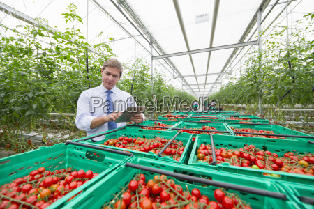 businessman with digital tablet inspecting crates