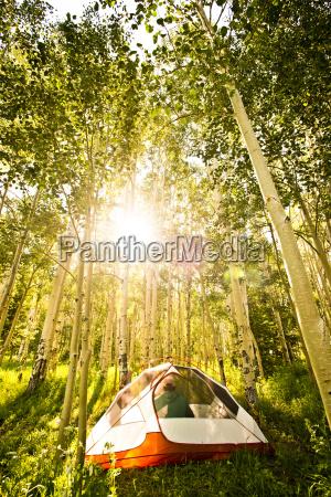 a camper sits inside his tent
