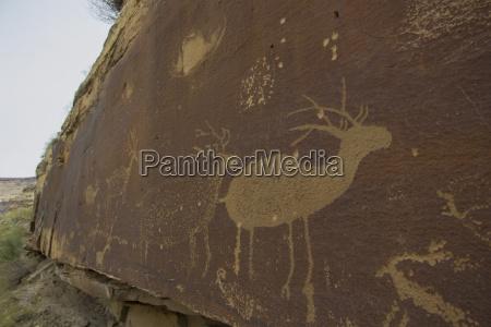 pictogramme in desolation canyon entlang der