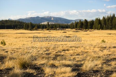 blick auf die unberuehrte landschaft in