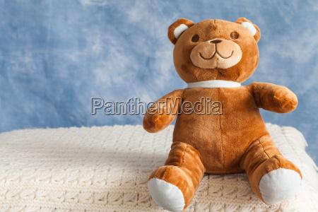 schoene teddybaer