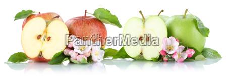 apple fruit apples fruits fruit slices