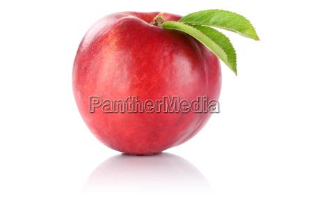 nektarine frucht obst freisteller freigestellt isoliert