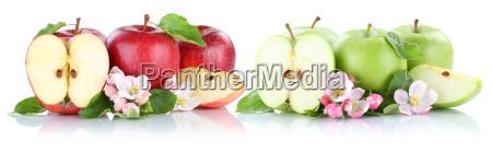 apple fruit apples fruits fruit red