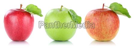 apple fruit apples fruit fruits isolated