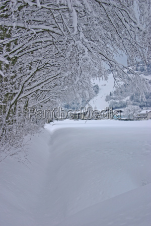 winter landscape from austria
