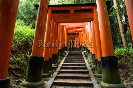 fushimi inari shrine torii temple in