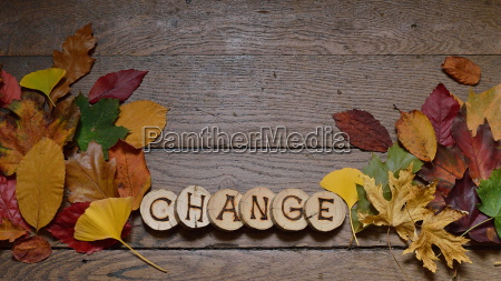 changing colorful leaves on wooden planks