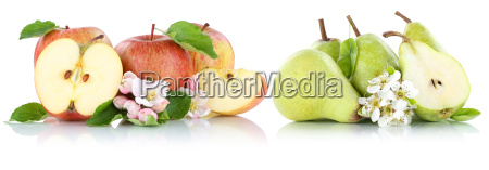 isolated apple and pear apple pear