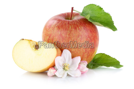 apple fruit cut free to face