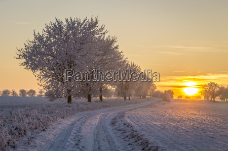 sunset in winter landscape in bad