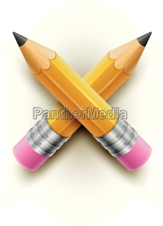 yellow pencils on white background vector