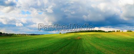 blau feld sommer sommerlich spielfeld landschaftsbild