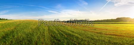 panorama sommerlandschaft