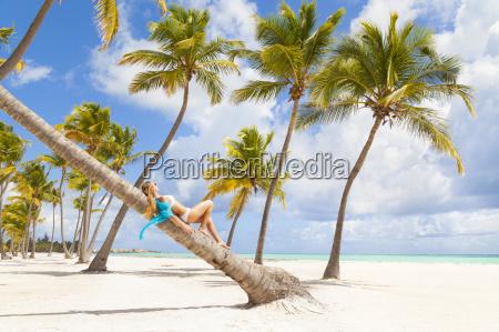 dominikanische, rebublik, junge, frau, entspannt, auf, palme - 17994976