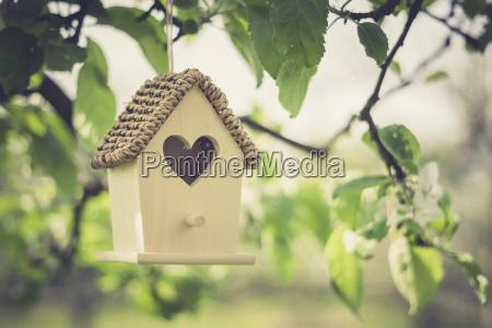 vogelhaus haengt am apfelbaum